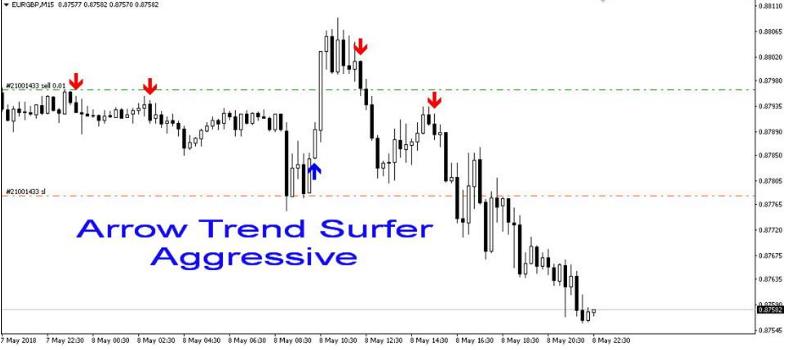 Forex trend surfer rashi investment