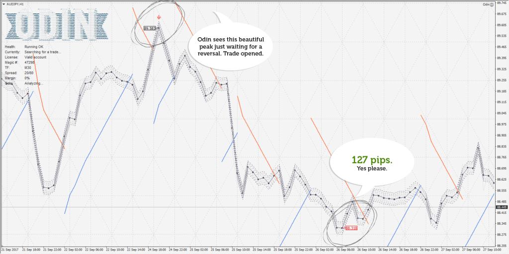 Was ist ein Lot im Trading? Die Lot Größe richtig berechnen